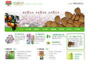 中国杏仁网